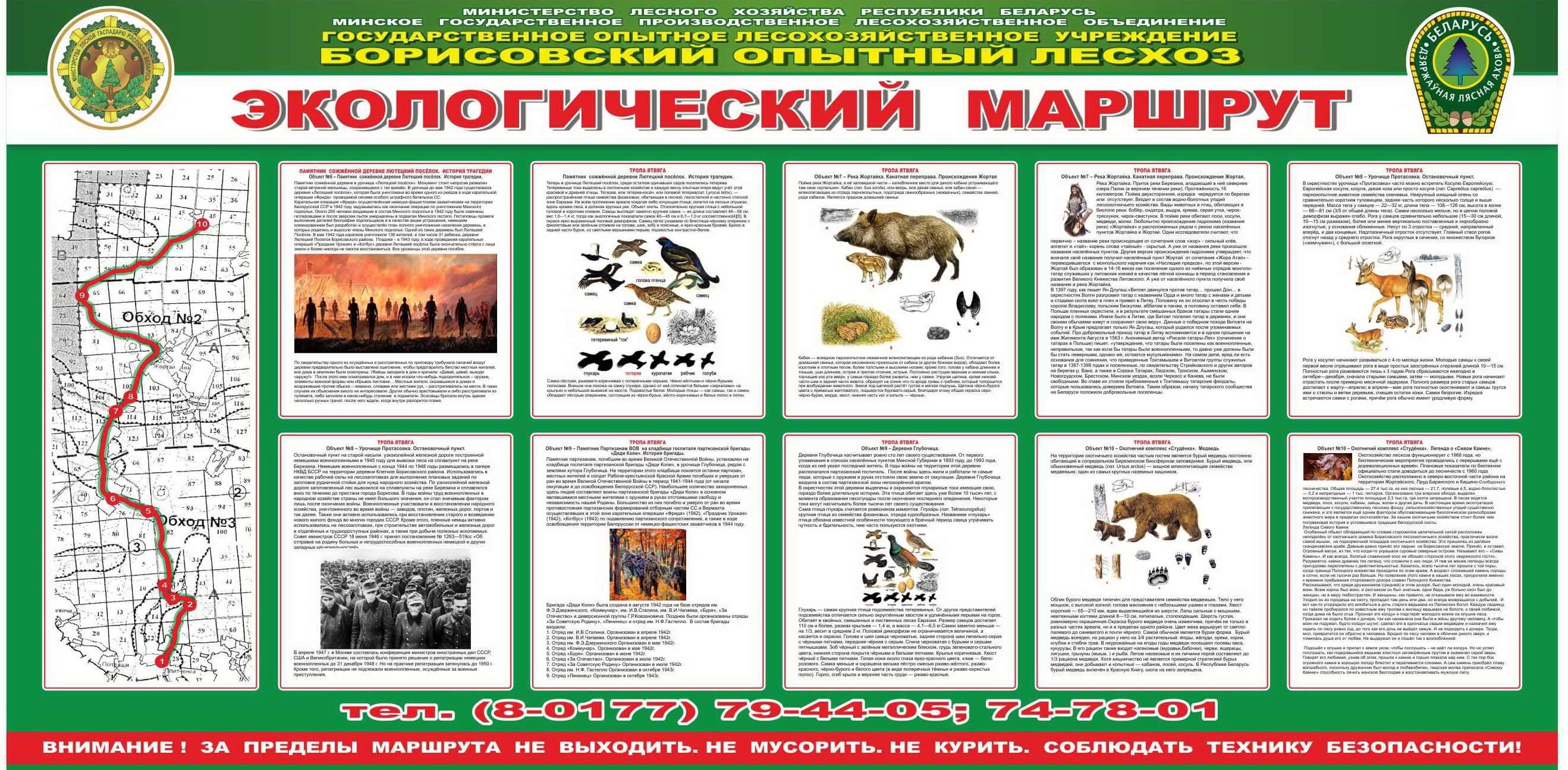 http://borisovleshoz.by/images/razdeli/tropa.jpg